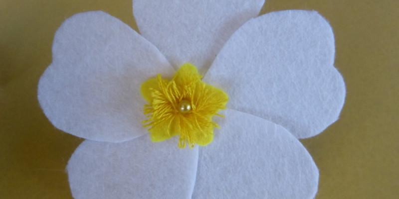 Gallipoli rose - cistus salviifolius